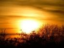 Sonnenspiele